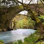 Lousios River, Arcadia, Peloponnese, Greece